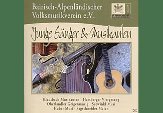 VARIOUS - Musiterkofferl 1 - Bairisch-Alpenländischer Volksmusikverein  - (CD)