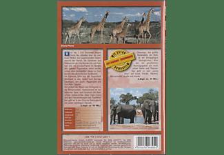 Weltweit: Namibia DVD