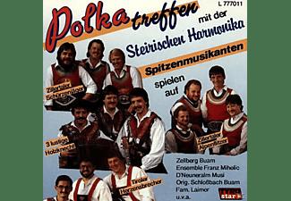 VARIOUS - Polkatreffen Mit Der Steirischen Harmonika  - (CD)