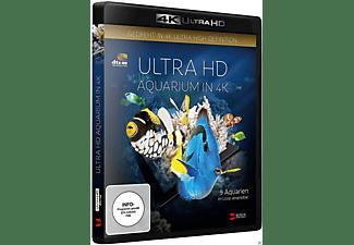 ULTRA HD AQUARIUM IN 4K 4K Ultra HD Blu-ray