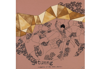 Tunng - Comments Of The Inner Chorus  - (CD)