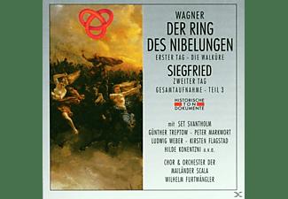 Coro E Orchestra Del Teatro Alla Scala Di Milano - Der Ring Des Nibelungen Teil 3  - (CD)
