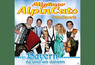 Allgäuer Alpincats From Bavaria - In Bayern da sind wir daheim  - (CD)
