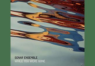 Sonar Ensemble - While You Were Gone  - (CD)