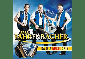 Die Fahrenbacher - Da is a Musi drin  - (CD)
