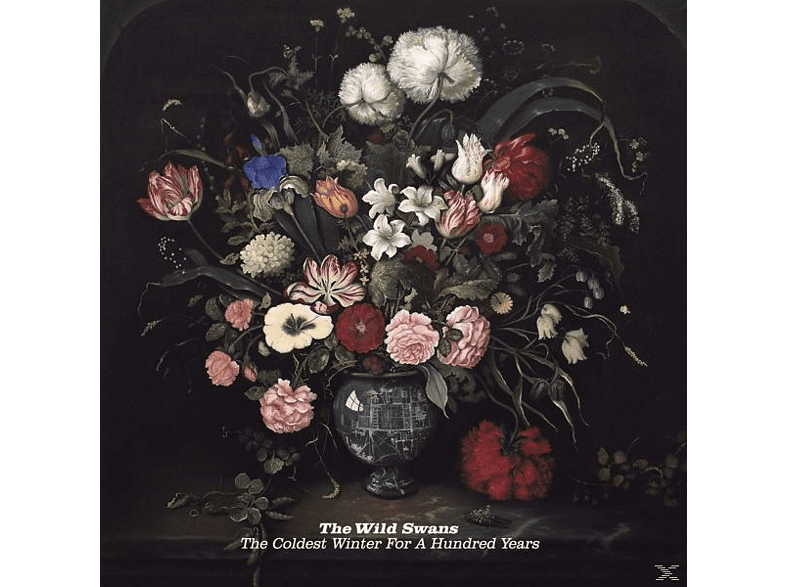 The Wild Swans - The Coldest Winter For Hundred Year [Vinyl]