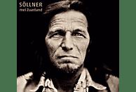 Hans Söllner - MEI ZUASTAND [Vinyl]