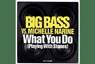 Michelle Bigg Bass Vs.narine - What You Do [Maxi Single CD]