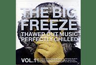 Simon Berry - the big freeze [CD]