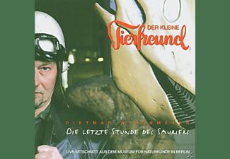 Dietmar Wischmeyer - Die Letzte Stunde Der Dinosaurier  - (CD)