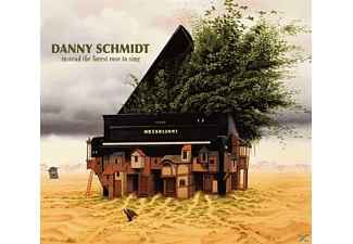 Danny Schmidt - INSTEAD THE FOREST ROSE TO SING  - (CD)