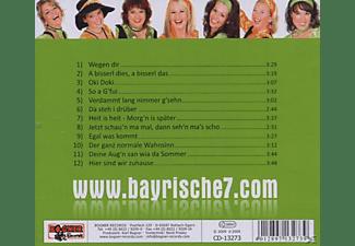 Die Bayrische Sieben - Verdammt Lang Nimmer G'sehn...  - (CD)