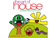 BOUQ, PRES.BY BOUQ - The Art Of House [CD]
