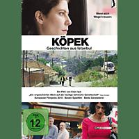 Köpek-Geschichten aus Istanbul [DVD]