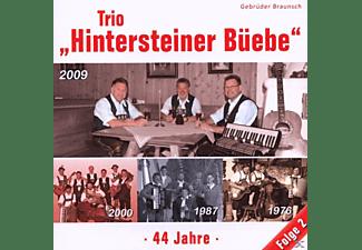Gebr.Braunsch Hintersteiner Büebe - 44 Jahre-Folge 2  - (CD)