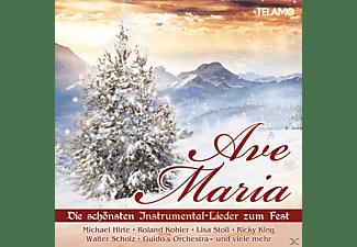 VARIOUS - Ave Maria,Die Schönsten Instrumental-Lieder Z.Fest  - (CD)