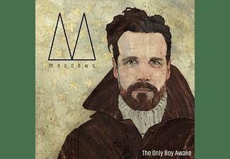 The Meadows - The Only Boy Awake  - (Vinyl)