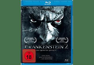 Frankenstein 2 - Das Monster erwacht Blu-ray