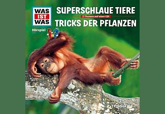 Was Ist Was - Folge 61: Superschlaue Tiere/Tricks Der Pflanzen  - (CD)