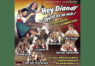 VARIOUS - Hey Diandl Spürst Es So Wie I  - (CD)