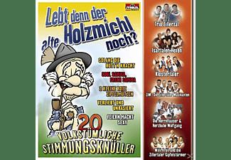 VARIOUS - Lebt Denn Der Alte Holzmichl Noch?  - (CD)