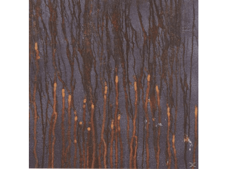 Asche - scenes from a galtons walk [CD]