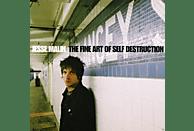 Jesse Malin - The Fine Art Of Self Destruction (Reissue) [CD]