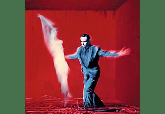 Peter Gabriel - Us (2LP)  - (Vinyl)