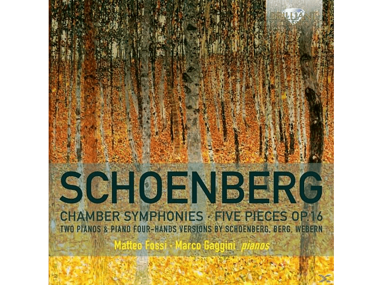 Fossi,Matteo/Gaggini,Marco - Chamber Symphonies/Five Pieces op.16 [CD]