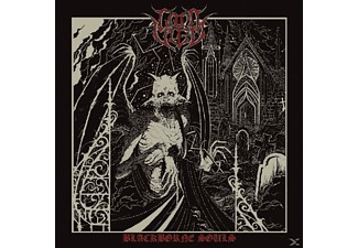 Lord Vigo - Blackborne Souls  - (Vinyl)