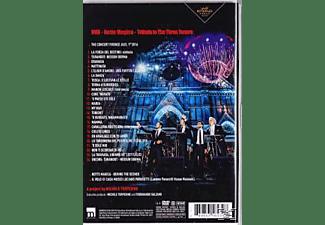 Il Volo, Plácido Domingo - Notte Magica-A Tribute to The Three Tenors (Live  - (DVD)