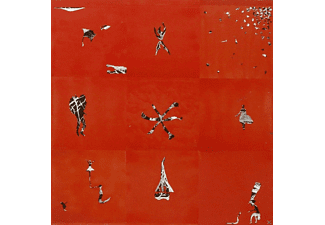 Animal Collective - Hollindagain  - (Vinyl)
