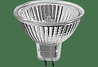 MÜLLER-LICHT 300029 Halogen Leuchtmittel GU5.3 Warmweiß 22 Watt 200 Lumen