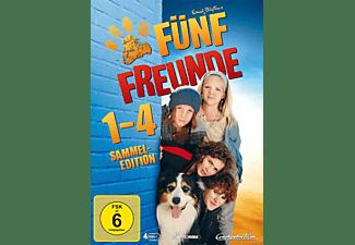 Fünf Freunde 1-4 DVD