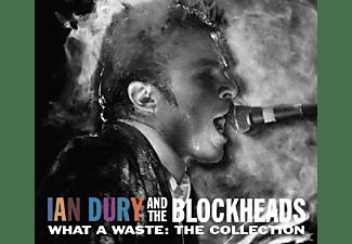 Ian Dury, Blockheads - What A Waste  - (CD)