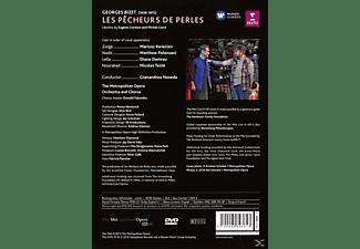 Diana Damrau, Mariusz Kwiecien, Nicolas Testé, Matthew Polenzani, The Metropolitan Opera Orchestra And Chorus - Les Pecheurs De Perles (Die Perlenfischer)  - (DVD)