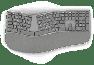 MICROSOFT Surface Ergonomische Tastatur, grau (3RA-00005)