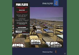 Pink Floyd - A Momentary Lapse Of Reason(20  - (Vinyl)