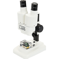 CELESTRON 822540 Labs S20, Mikroskop, Weiß