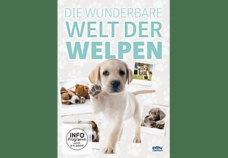 Die wunderbare Welt der Welpen DVD
