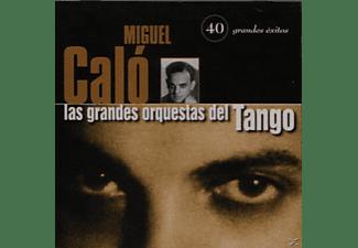 Miguel Calo - 40 GRANDES EXITOS  - (CD)