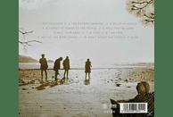 The Dandy Warhols - This Machine [CD]
