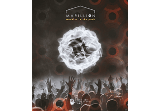Marillion - Marbles In The Park  - (DVD)