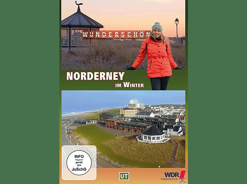Norderney im Winter - Wunderschön! [DVD]