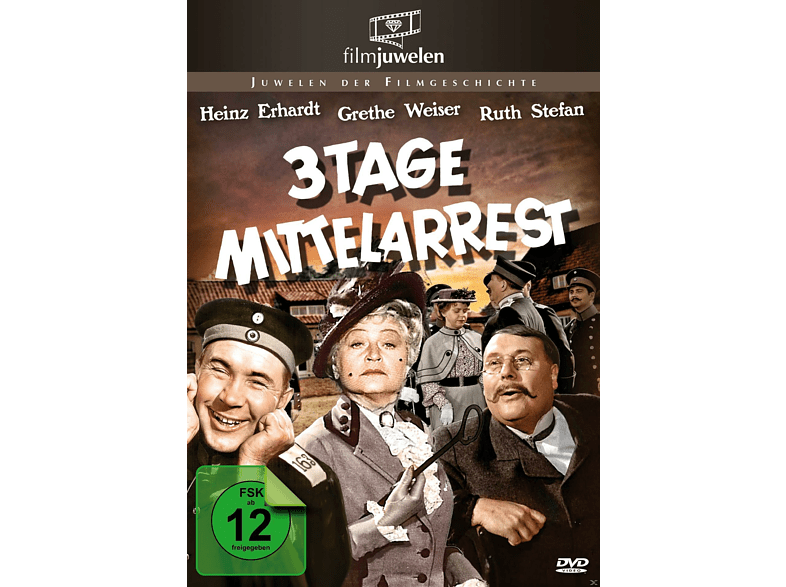 Drei Tage Mittelarrest [DVD]