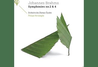 Collegium Vocale Gent, Ann Hallenberg, Orchestre Des Champs-elysees - Sinfonien 2 & 4  - (CD)