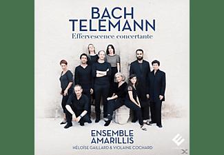 Ensemble Amarillis - Effervescence Concertante  - (CD)