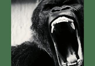 Ape Shifter - Ape Shifter  - (CD)