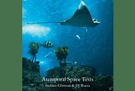 Stefano Ghittoni, Dj Rocca - ATEMPORAL SPACE TESTS (+CD) [LP + Bonus-CD]