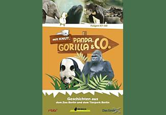 Panda, Gorilla & Co. Vol.7 (Folgen 57-60) DVD